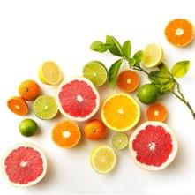 citrus_cover_2